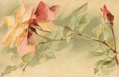 Pastel rose & bud.  Catherine Klein, 1909.