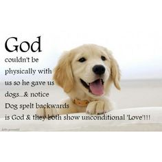 #Dogs are #Gods on earth.