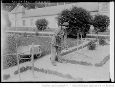 Ecole de Grignon [Yvelines, Centre de rééducation des blessés et mutilés de guerre, un soldat amputé d'un bras travaille au potager] : [photographie de presse] / [Agence Rol] - 1