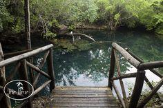 Indigenous Eyes Ecological Park & Reserve  #PuntaCana #DominicanRepublic #Caribbean #TortugaBay