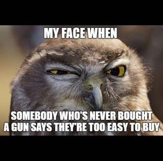 Airsoft hub is a social network that connects people with a passion for airsoft. Talk about the latest airsoft guns, tactical gear or simply share with others on this network Gun Humor, Gun Meme, Gun Quotes, Life Quotes, Funny Memes, Hilarious, Funny Signs, By Any Means Necessary, Pro Gun