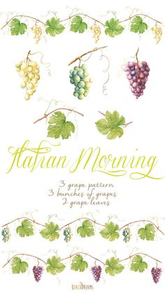 Watercolor Grapes & leaves. Vine Borders DIY por ReachDreams