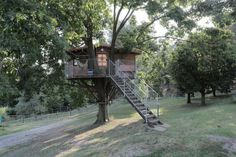 case sull'albero in Italia Where To Go, Glamping, My House, Places To Go, Explore, Outdoor Decor, Home Decor, Tree Houses, Hobby