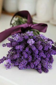 Fragrant & Beautiful Bouquet of Lavender