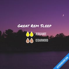 Great Rem Sleep - Essential Oil Diffuser Blend by lenora Essential Oils For Sleep, Essential Oil Diffuser Blends, Doterra Essential Oils, Young Living Essential Oils, Doterra Blends, Doterra Oil, Diffuser Recipes, Perfume, Young Living Oils