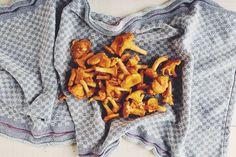 Pfifferlinge putzen ist wichtig, damit die saisonalen Pilze auch richtig gut schmecken. Ich zeige Dir in 5 Schritten, wie Pfifferlinge putzen gelingt.