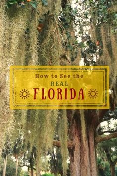 Eleven authoritative web sites run by locals will help you plan a road trip or travel itinerary to see the REAL Florida.  Backroad Planet | How to See the Real Florida: 11 Essential Web Sites | http://backroadplanet.com