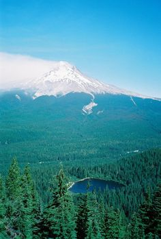 Mt Hood, Trillium Lake I can see the Mountian from home so beautiful here The Places Youll Go, Places To See, Beautiful World, Beautiful Places, Beautiful Scenery, Amazing Places, Mount Hood National Forest, Trillium Lake, Adventure Is Out There