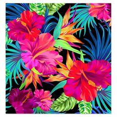 Latest Tropical Patterns on Behance More More