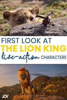 Get a First-Look at The Lion King Live Action Main Characters! Lion King Video, Lion King Movie, Le Roi Lion Film, Simba Lion, Timon And Pumbaa, Movies 2019, Action Movies, Disney Trips, Live Action