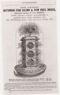 The Fern and Mossery: Fern Fever: The Story of Pteridomania - Victorian Terrarium Craze Large Terrarium, Orchid Terrarium, Bottle Terrarium, Terrarium Plants, Succulent Terrarium, Victorian Crafts, Victorian Flowers, Victorian Terrariums, Fern Grotto