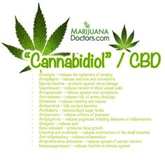 Friends, when it comes to medical marijuana, click LIKE & rePIN if choose your medicine according to its level of CBD ~* Tell us, how does CBD help you?  www.MarijuanaDoctors.com