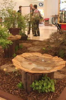 birdbath love- we have several stumps in our yard.. this is a good idea.