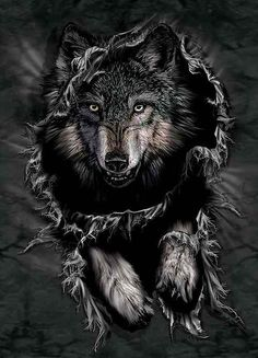 The wolf so amazing.