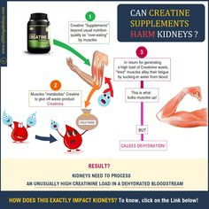 Serum Creatinine, Creatinine Levels, Bulk Muscle, Muscle Body, Human Kidney, Uk Health, Kidney Health, Body Organs