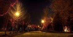 Christmassy Waterloo Park Ontario, Park, Parks