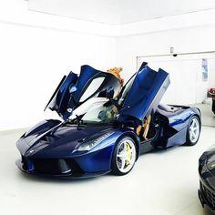 "Ferrari LaFerrari no Instagram: ""BLUETIFUL #overusedcaption I : @exotics_cars_ I #prestigecarstyle #ferrarilaferrari #laferrari #ferrari #tagsforlikes #t4l"""