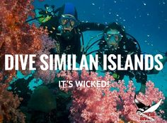 Similan Liveaboard, Similan Diving and Khao Lak Diving are adventures of a lifetime! Read on for more information about the Similan Islands: http://wickeddiving.com/wd-locations/similan-islands/