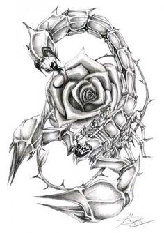 Black and White Scorpio