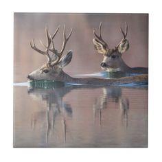 Shop Wyoming, Sublette County, Mule deer bucks Tile created by theworldofanimals. Wildlife Photography, Animal Photography, Bow Hunting Tips, Deer Antler Crafts, Mule Deer Buck, Big Deer, Deer Art, Cute Baby Animals, Wild Animals