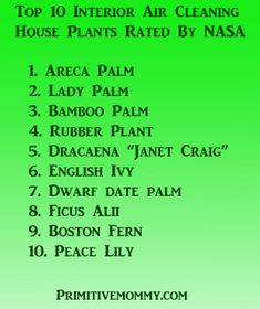 plants for healthy air.. good to know.    I have all but 1 in my house after a fire ........... you should see them soaking up the TOXINS.....at the end of the leaf !!!!!!!!!!1