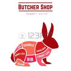 Rabbit cuts diagram for Butcher shop Vector illustration Stock Vector                                                                                                                                                                                 More