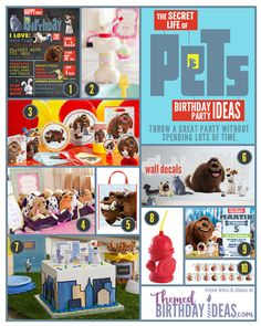 Throw an amazing Secret Life of Pets Themed Birthday Party without spending a lot of time!