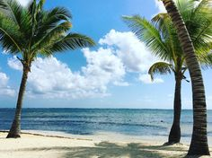 Belizean Shores Resort, Ambergris Caye| Belize.  (photo by: https://www.instagram.com/_crisporto/)