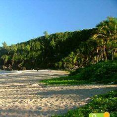 Grand'Anse, Reunion Island