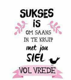 Sukses is om saans in te kruip met jou siel vol vrede Words Quotes, Wise Words, Life Quotes, Sayings, Positive Quotes, Motivational Quotes, Inspirational Quotes, Funny Quotes, Afrikaanse Quotes