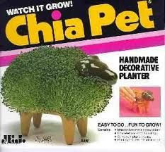 Chia Pets - first appearance, 1977. Hey, if it was tacky, it came out in the 1970's!