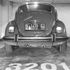 Sunday!  #sundayride #foundnumbers #3201 #numbers #vw1500 #vwbeetle #käfer #vwkäfer #vwcox #vw #coccinelle #volkswagenkäfer #volkswagen #fusca #volkswagen1500 #volkswagenbeetle #letsplayvw #1969vw #aircooled #beetlegram #helvetica #beetle1500