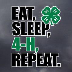 Eat, Sleep, 4-H, Repeat Decal