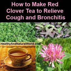 Healing Remedies How to Make Red Clover Tea to Relieve Cough and Bronchitis - This drink contains powerful ingredients with strong lung healing properties. Cold Remedies, Natural Health Remedies, Natural Cures, Natural Healing, Herbal Remedies, Health And Beauty, Health And Wellness, Health Tips, Healing Herbs