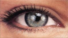 Permanent Makeup Eyeliner Styles, Permanent Eyeliner Pictures Of Permanent Eye Liner Designs