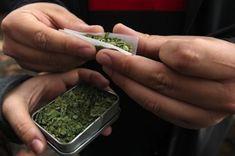 Tiene verdaderos fanáticos, casi militantes. La marihuana es fuertemente defendida por quienes la consumen, en un marco de tolerancia y aprobación social que la ha instalado como d
