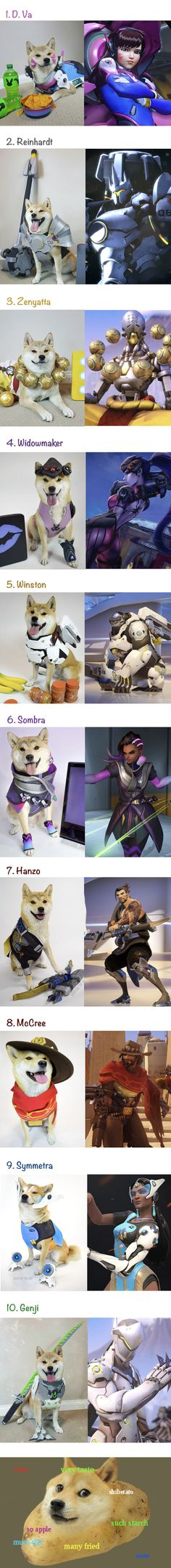 Overwatch doggo cosplay is the best cosplay.
