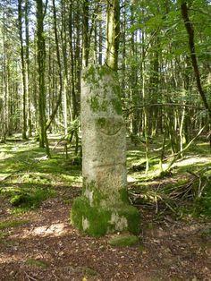 "Menhir "" Babouin ""  à Trédion,    Morbihan       Brittany"