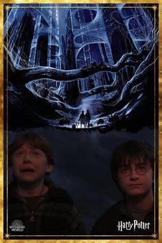 No need to panic, a friend of Hagrid's is a friend to all... [📖 Page to Screen: The Complete Filmmaking Journey, Harper Collins] Harry Potter Icons, Harry Potter Quotes, Harry Potter Fandom, Harry Potter Characters, Albus Dumbledore, Hogwarts, Golden Trio, Harry Potter Platform, Michael Gambon