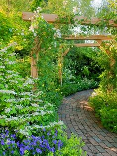 love these structures and how they draw you into the garden...