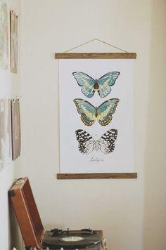 Lepidoptera Butterfly Study Vol. 2. So pretty!