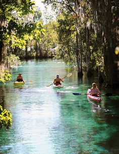 Kayaking in Crystal River National Wildlife Refuge