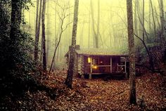 Beautiful Mansion Log Cabins | He misses his life in the woods more with each passing year...