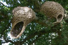 Artists symbiotic sculptures weave a magical story about nature (Photos) : TreeHugger