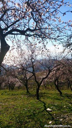 Paisajes naturales de la Sierra La Contraviesa, #Sorvilán, #Granada. #Montañayplaya
