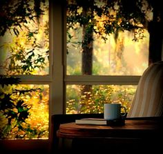 """""""You can never get a cup of tea large enough or a book long enough to suit me"""" -C.S. Lewis"""