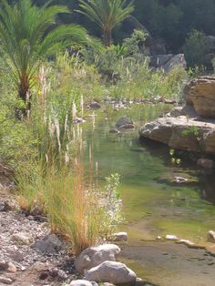 South Atlas ; paradise valley Oil City, Spring Lake, Paradise Valley, Tangier, Atlas Mountains, Green Grass, Ponds, Rivers, Lakes