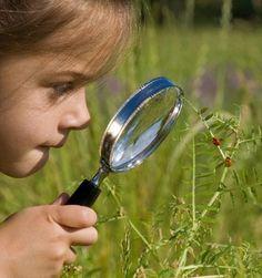 What is Nature Deficit Disorder? - Lost in the Woods Preschool Science Activities, Kindergarten Science, Science Experiments Kids, Science Classroom, Science Lessons, Teaching Science, Science For Kids, Teaching Ideas, Science Ideas