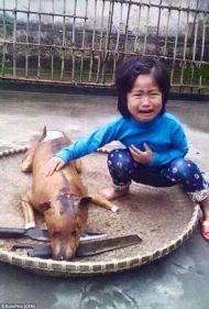 Vietnam: il pianto della bimba che ritrova il suo cane dopo essere stato arrostito.