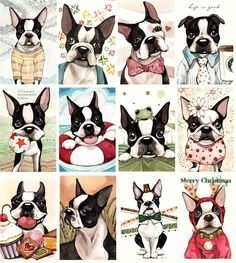 Boston Terrier prints